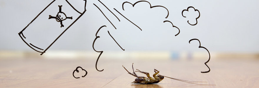 débarrasser des mouches